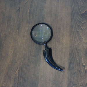 HORN HANDLE MAGNIFIER