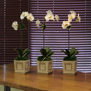 WHITE & GREEN ORCHID - ARTIFICIAL
