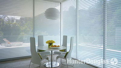 Hunter Douglas Light Control & Privacy